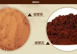 灵芝孢子粉与破壁灵芝孢子粉有什么区别?