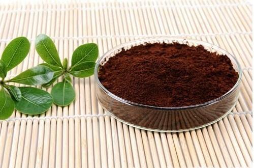 灵芝孢子粉可以长期吃吗?会对身体有危害吗?